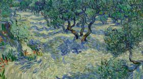 Ван Гог картинасынан шегіртке қалдығы табылды