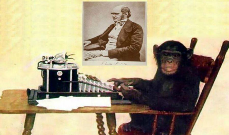 Кеңсе креслосын Чарльз Дарвин ойлап тапқан