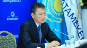 Тимур Құлыбаев: Кәсіпкерлерге қызмет көрсетуді электронды форматқа көшіру керек