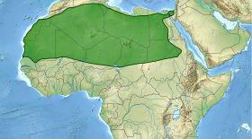 6 мың жыл бұрынғы сулы-нулы Сахара
