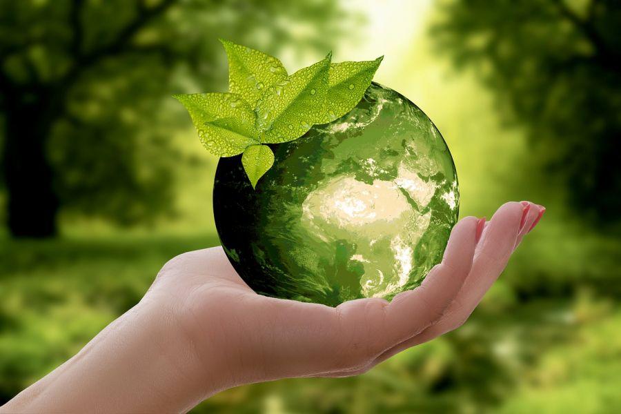 Эко-ойлау және 10 кеңес