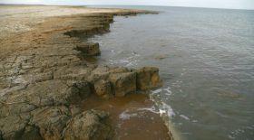Qazaq Geography-дің оңтүстік Аралға жасаған сапары сәтті аяқталды