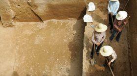 Қытайда 120 миллион жыл бұрын жасаған динозаврлардың ізі табылды