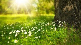 30 маусымға арналған ауа райы болжамы