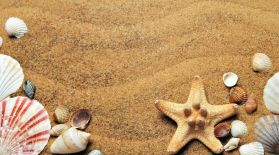 Демалысқа дәрі қорабын жинайық