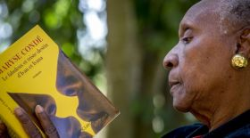Балама марапат: Әдебиет бойынша альтернативті