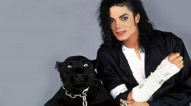 Майкл Джексон құпиясы