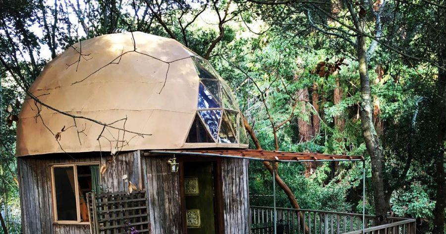 Туристер таңдауы: Саңырауқұлақ пішінді ағаш үй