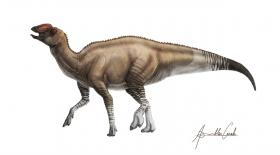 АҚШ территориясынан динозаврдың жаңа түрі табылды