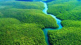 Жер ғаламшарының өкпесі: Амазония өртке оранды