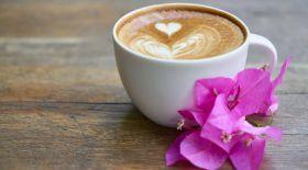 Кофенің танымал түрлері