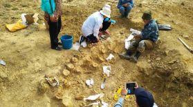 Маңғыстау облысынан ұзындығы 9 метр ихтиозавр қаңқасы табылды
