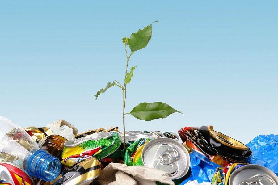 Бизнес өкілдері экологиялық бастамаларды қолдайды