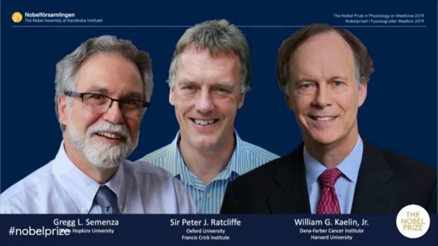 Медицина саласы бойынша Нобель сыйлығы лауреаттары анықталды