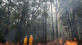 Аустралияда жергілікті өрт сөндірушілер штаттағы 21 000 үйді аман алып қалды
