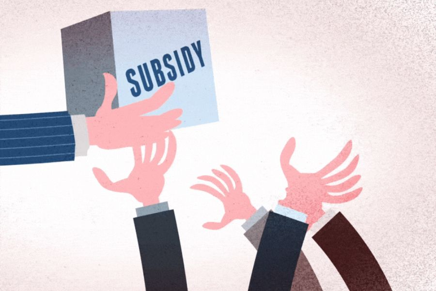 Субсидия деген не?