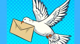 Көгершін-пошташы жайлы қызық деректер