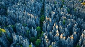 Мадагаскардағы
