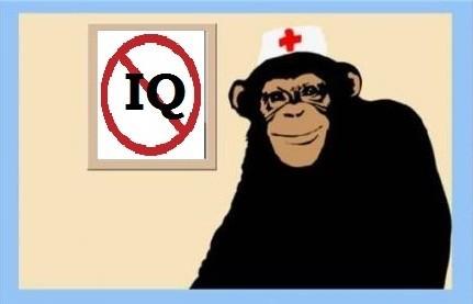 IQ-тесттің дымға да пайдасы жоқ