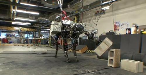 Boston Dynamics компаниясы ұсынған BigDog роботы