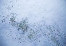 Алматы шаһары Ұлыстың Ұлы күнін атап өтті