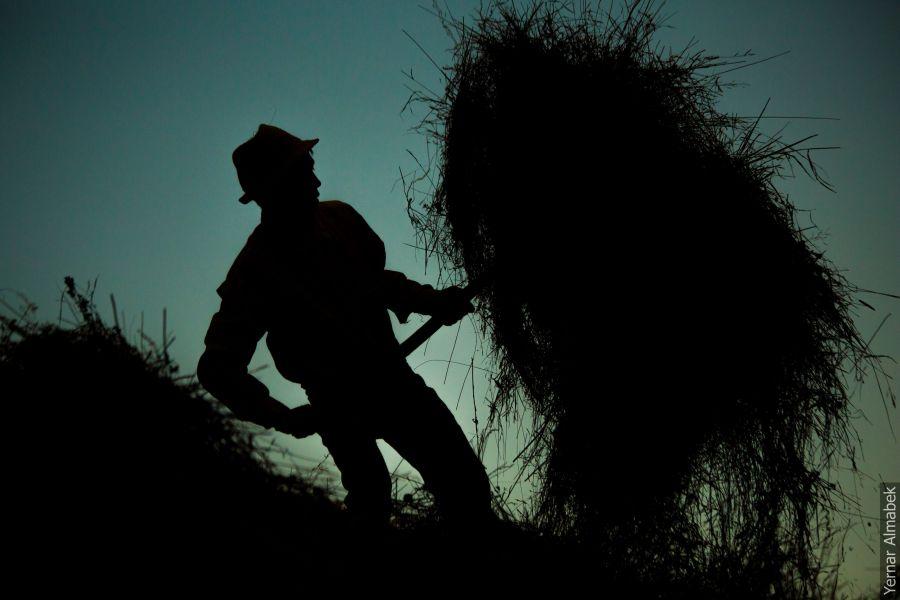 Ауылды аңсағанда сағынышыңды басатын 15 сурет