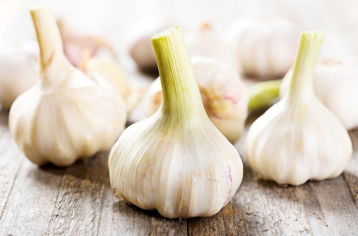 Свойства баклажанов польза и вред витамины калорийность